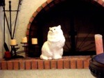 porcelain cat ♥